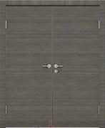 Дверь звукоизоляционная Rw 42dB Prima M900 Грей двустворчатая распашная с алюминиевой кромкой и авто